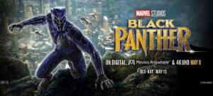 『ブラック・パンサー』感想・評価【後半ネタバレ解説】二つの顔を持つ新しいヒーロー